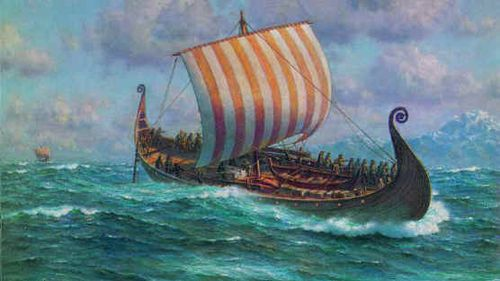 Vikings homework